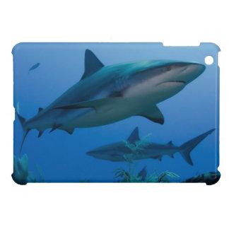 Caribbean Reef Shark Jardines de la Reina iPad Mini Cover