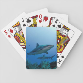 Caribbean Reef Shark Jardines de la Reina Playing Cards