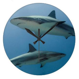 Caribbean Reef Shark Large Clock
