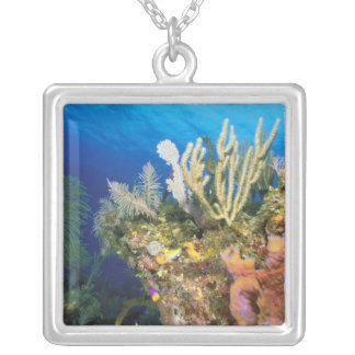 Caribbean. Reef. Silver Plated Necklace