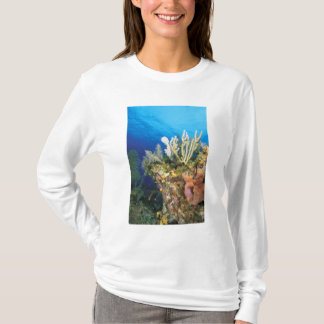 Caribbean. Reef. T-Shirt