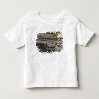 Caribbean Sea, Cayman Islands.  Crashing waves 2 Toddler T-Shirt