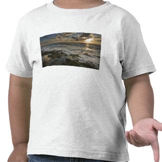 Caribbean Sea, Cayman Islands.  Crashing waves 2 T Shirt