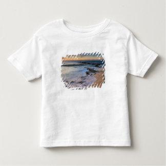 Caribbean Sea, Cayman Islands. Crashing waves T Shirts
