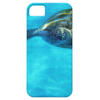 Caribbean Sea Turtle Swimming At You iPhone 5 Cases