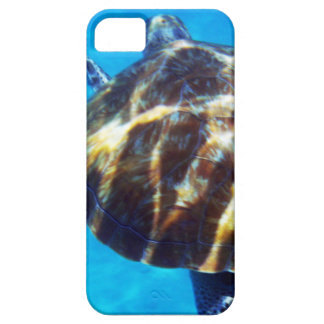 Caribbean Sea Turtle Swimming Away iPhone 5 Cases