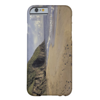 Caribbean, St. Kitts. Footprints on Atlantic Barely There iPhone 6 Case