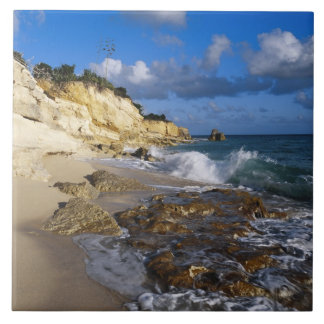 Caribbean, St. Martin, Cliffs at Cupecoy beach Large Square Tile