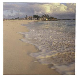 Caribbean, St. Martin (St. Maarten). Maho Bay Large Square Tile
