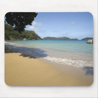 Caribbean - Tobago - Beach along Atlantic Mouse Mat