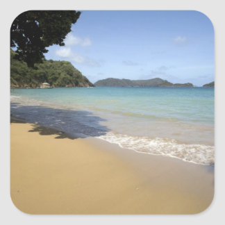 Caribbean - Tobago - Beach along Atlantic Square Sticker