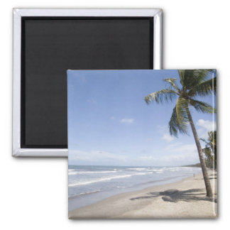 Caribbean - Trinidad - Manzanilla Beach on 2 Magnet