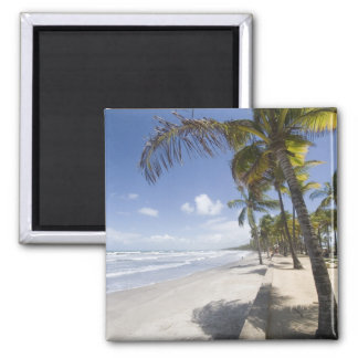 Caribbean - Trinidad - Manzanilla Beach on Magnet