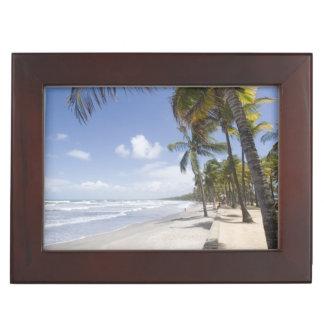 Caribbean - Trinidad - Manzanilla Beach on Memory Boxes