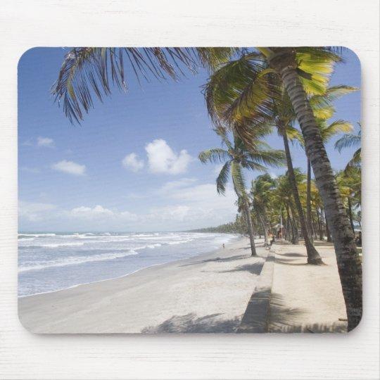 Caribbean - Trinidad - Manzanilla Beach on Mouse