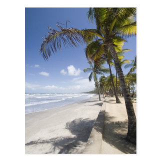 Caribbean - Trinidad - Manzanilla Beach on Postcard