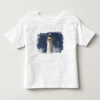 Caribbean, TURKS & CAICOS, Grand Turk Island, 2 Toddler T-Shirt