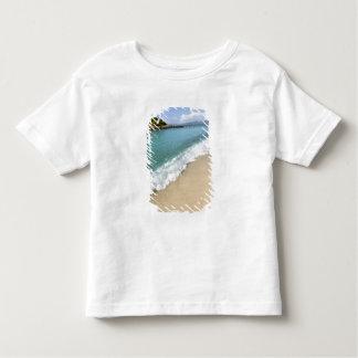Caribbean, U.S. Virgin Islands, St. John, Toddler T-Shirt