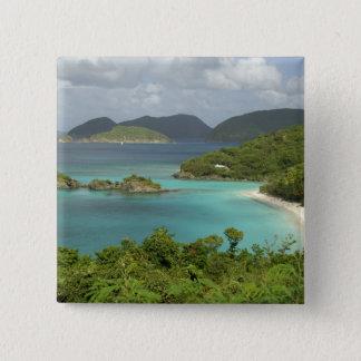 Caribbean, U.S. Virgin Islands, St. John, Trunk 15 Cm Square Badge