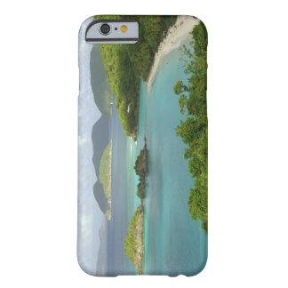 Caribbean, U.S. Virgin Islands, St. John, Trunk 2 Barely There iPhone 6 Case