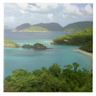 Caribbean, U.S. Virgin Islands, St. John, Trunk 2 Large Square Tile