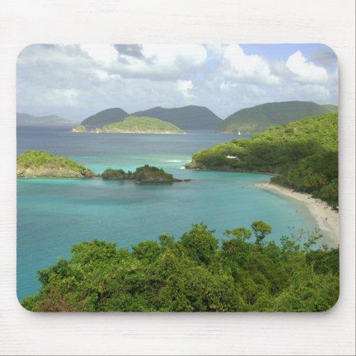 Caribbean, U.S. Virgin Islands, St. John, Trunk 2 Mousepads