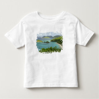 Caribbean, U.S. Virgin Islands, St. John, Trunk 2 Tee Shirts