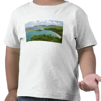 Caribbean, U.S. Virgin Islands, St. John, Trunk 2 T Shirt