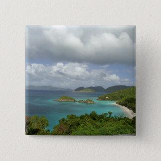 Caribbean, U.S. Virgin Islands, St. John, Trunk 3 15 Cm Square Badge