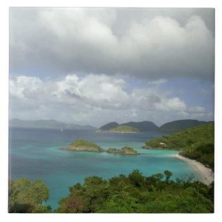 Caribbean, U.S. Virgin Islands, St. John, Trunk 3 Large Square Tile