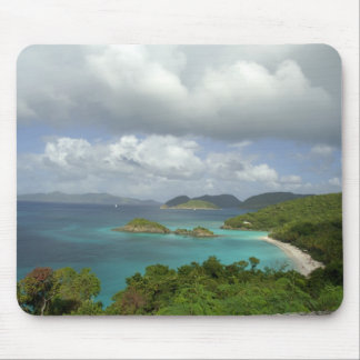 Caribbean, U.S. Virgin Islands, St. John, Trunk 3 Mouse Mat