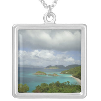Caribbean, U.S. Virgin Islands, St. John, Trunk 3 Silver Plated Necklace