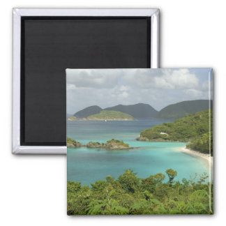 Caribbean, U.S. Virgin Islands, St. John, Trunk Magnet