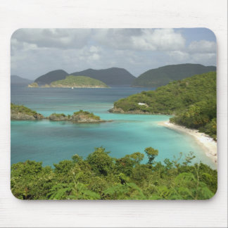 Caribbean, U.S. Virgin Islands, St. John, Trunk Mouse Mat