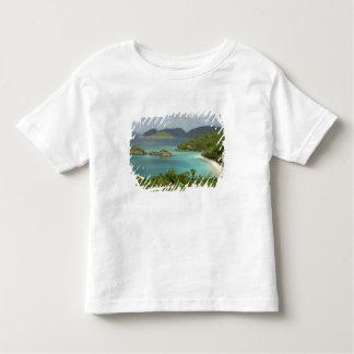 Caribbean, U.S. Virgin Islands, St. John, Trunk Toddler T-Shirt
