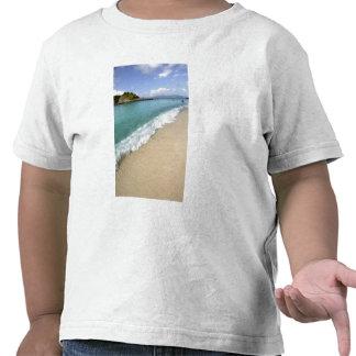 Caribbean, U.S. Virgin Islands, St. John, Shirt