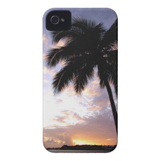 Caribbean, U.S. Virgin Islands, St.Thomas, 3 iPhone 4 Case-Mate Cases
