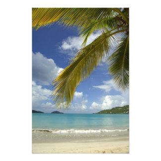 Caribbean, U.S. Virgin Islands, St.Thomas, 4 Photo Print