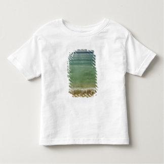 Caribbean, U.S. Virgin Islands, St.Thomas, 4 Toddler T-Shirt