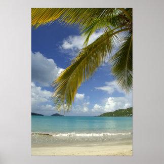 Caribbean, U.S. Virgin Islands, St.Thomas, Poster