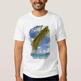 Caribbean, U.S. Virgin Islands, St.Thomas, T Shirt