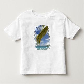Caribbean, U.S. Virgin Islands, St.Thomas, T Shirts