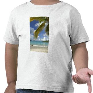 Caribbean, U.S. Virgin Islands, St.Thomas, Tshirt