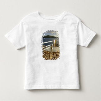 Caribbean, U.S. Virgin Islands, St. Thomas. View Toddler T-Shirt
