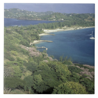 Caribbean, West Indies, St. Lucia. View of Large Square Tile