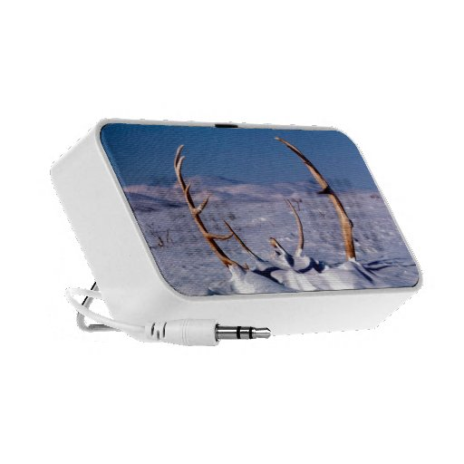 Caribou Antlers in The Snow Travel Speakers