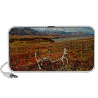 Caribou Antlers On The Alaskan Tundra iPod Speakers