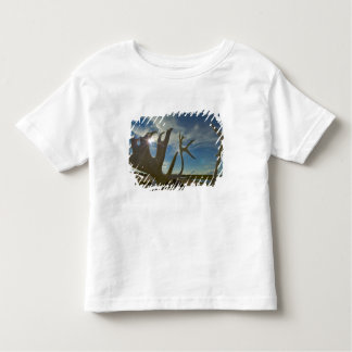 Caribou antlers on the sandy ground in the toddler T-Shirt