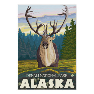 Caribou in the Wild - Denali National Park Posters