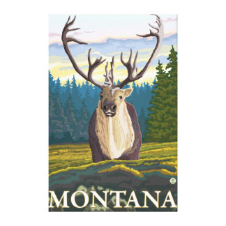 Caribou in the Wild - Montana Canvas Print